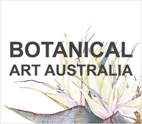 Botanical-Art-Australia1