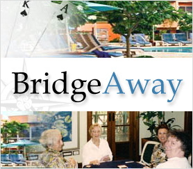 BridgeAway